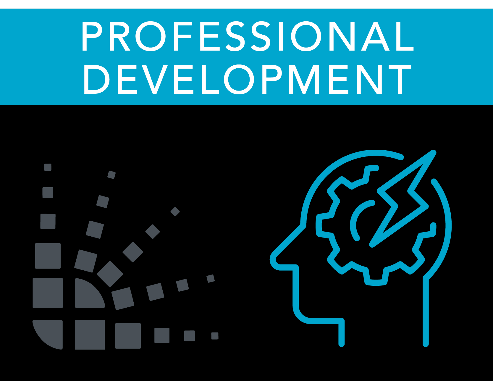 professional_development_2